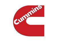 Cummins India